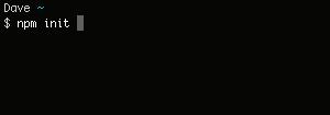 npm_init