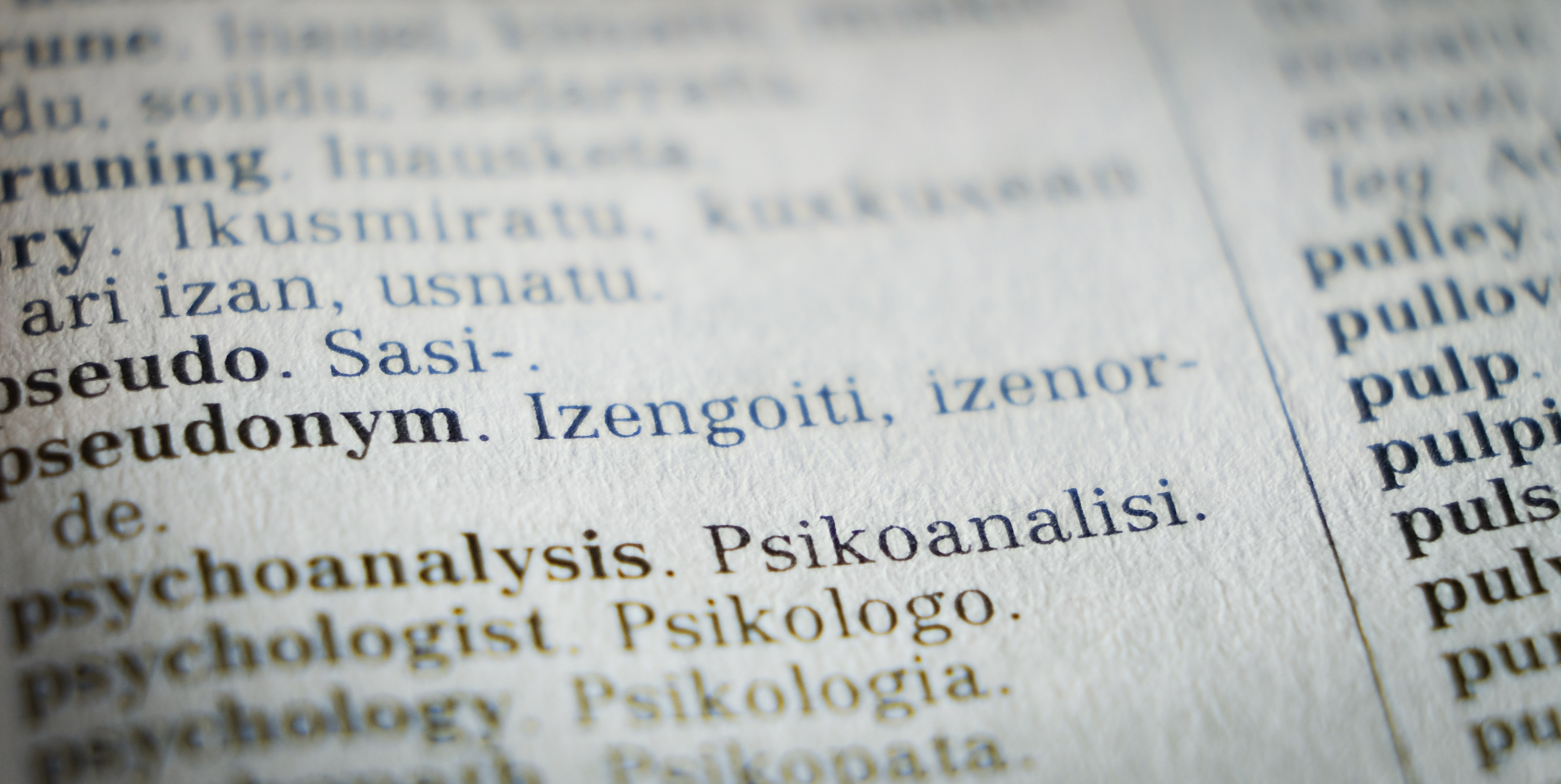 The image is a camera shot of a translation dictionary between English and a Eastern European language.